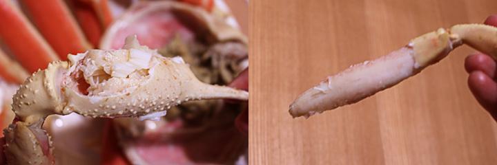 松葉ガニハサミや身ぎっしり画像