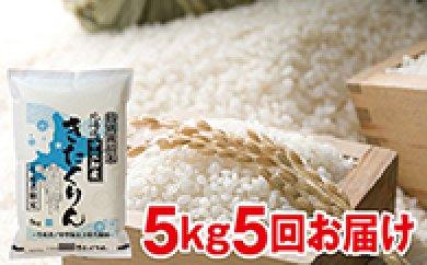 27年度米 北海道赤平市産きたくりん 特別栽培米 5kg×5回の特産品画像