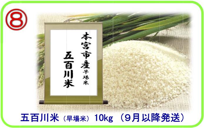 五百川米(早場米)10kgの特産品画像