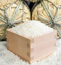 河内産 特産品コシヒカリ 20kgの特産品画像