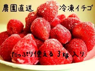 冷凍イチゴたっぷり3キロ入りの特産品画像