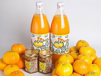 かきうち農園の旬のみかんとジュース・マーマレードの詰合せの特産品画像