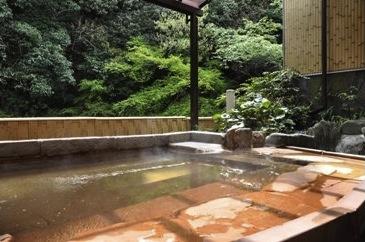 【奥水間温泉】入浴券5枚セットの特産品画像