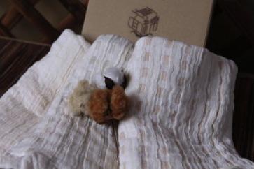 オーガニックコットン100%「真面綿」の特産品画像