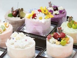 泉州タオルケーキ 1年分(12回、毎月のお届け)の特産品画像
