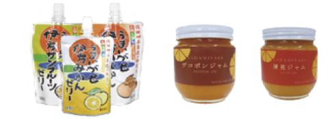 柑橘の加工品詰合せの特産品画像