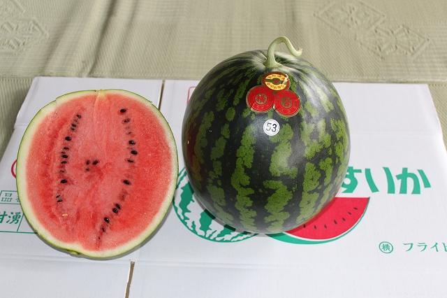 越知町のあま~いスイカ【約10kg 1玉】の特産品画像