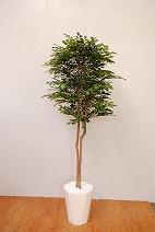 トネリコ(造花)の特産品画像