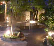 「天然温泉大木の湯アクアス」入浴券+お食事券(2名様分)の特産品画像