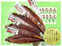 温泉うなぎ蒲焼(特大)4尾の特産品画像