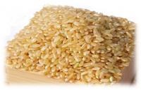 山香ゆうきの会の米60kg(玄米)の特産品画像